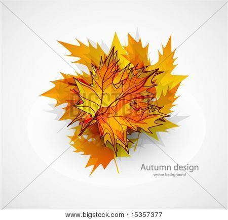 Autumn leaves composition. Vector background