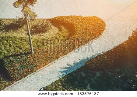 Two crossed cobbled paths with palm on a hot summer sunny day in Rio de Janeiro with lawn and flowers view from top