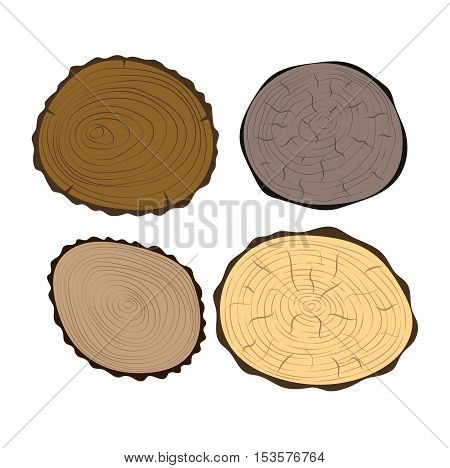 Wood slice texture wooden circle cut tree material.