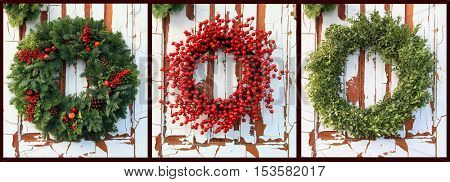 Three Christmas wreaths of  evergreen and red holly berries against a vintage wooden door. Also available individually in high resolution.
