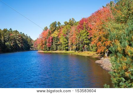 Colorful autumn trees by a lake in New England