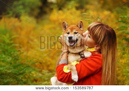 Girl kisses a Shiba Inu dog in autumn park. Pedigree dog. Funny animals and their owners. Riot of colors of nature. Outdoor Activities.