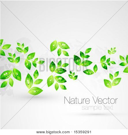 Vector green leaves background