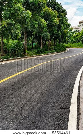 curved road with trees on the side in a rural country