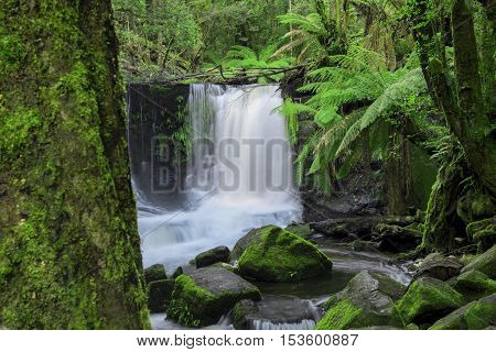 Horseshoe Falls In Mount Field National Park