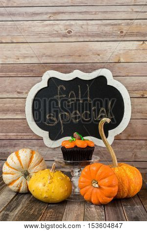 Pumpkin muffin with ornamental gourds and chalkboard sign