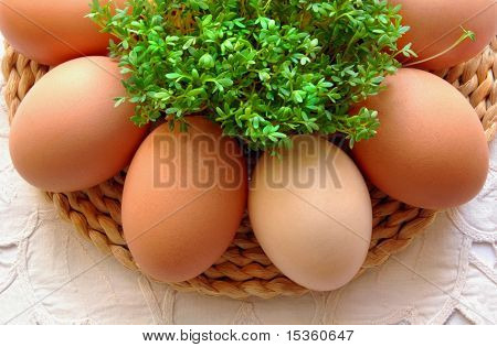 Composition of natural eggs and fresh watercress