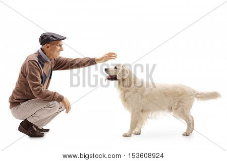 Elderly man playing with his dog isolated on white background