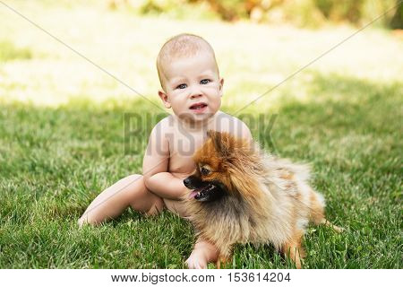 Little Baby Playing With Dog Pomeranian Spitz On The Green Grass Outdoors