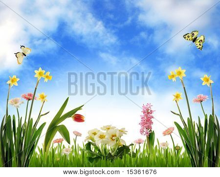 Garden scenery, photoillustration