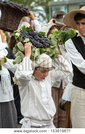 FUNCHAL MADEIRA PORTUGAL - SEPTEMBER 4 2016: Boy man carry the basket of grapes in traditional costume. Madeira Wine Festival - Historical and Ethnographic parade in Funchal on Madeira. Portugal