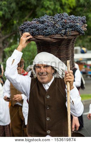 FUNCHAL MADEIRA PORTUGAL - SEPTEMBER 4 2016: the old man carry the basket of grapes in traditional costume. Madeira Wine Festival - Historical and Ethnographic parade in Funchal on Madeira. Portugal