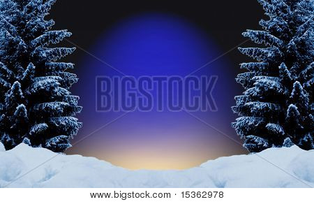 Festive night background with fir trees covered with snow