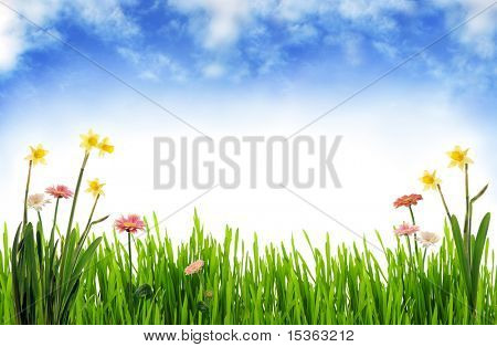 Paisagens de Primavera