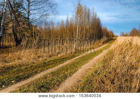 Landscape with road in a field in late autumn