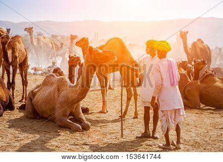 An Unidentified Men Attends The Pushkar Fair