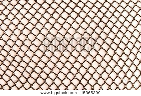 Stockings texture. Close view. On woman leg. | Stock photo. download preview