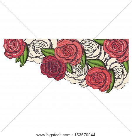 delicate rose flower drawing icon image vector illustration design