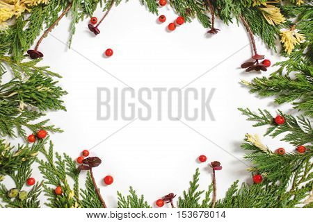 Evergreen fir tree decoration for christmas card isolated new year pattern copyspace white. Arrangement with succulents and red berries.