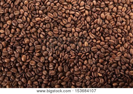 close up photo of coffee beans background