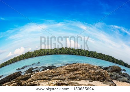 Beautiful blue sky and tropical mangrove forest with stone at coast