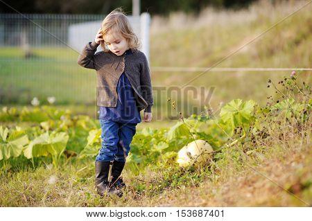 Little girl having fun at autumn garden