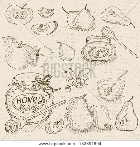 Set of chalk sketch hand drawn, in sketch style, food and spices, old paper textured background. Sweet Set with honey, apples, pear and funny bee. Hand drawn vector illustration.