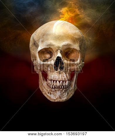 Human skull with smoke on dark color background