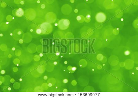 Green festive Christmas elegant abstract blurred background