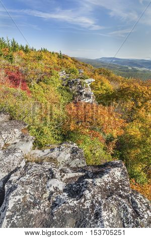 Fall foliage colors the cliff edge at Bear Rocks in the Dolly Sods Wilderness in the Allegheny Mountains of West Virginia.