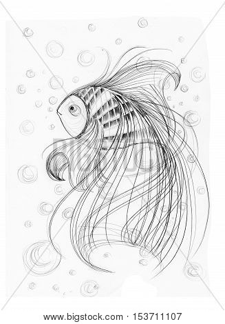 Cute Fish imagination Applied art design freehand pencil sketch black and white Background is bubbles.