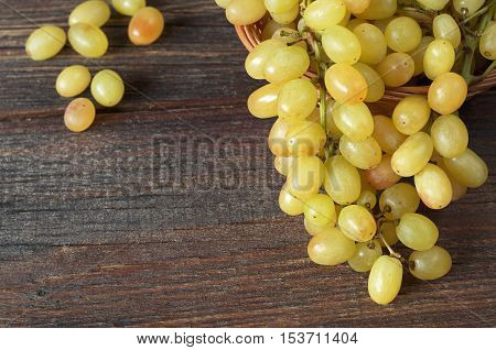 Close up view of ripe grape on dark wooden background