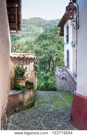 A cobble stone path leading down between antique buildings into the jungle