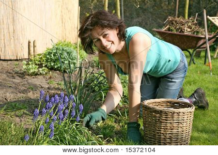 A mature smiling female gardener or woman working in the garden