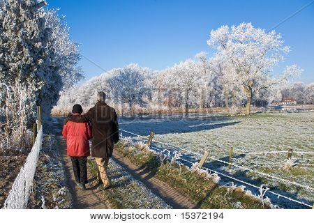 senior couple strolling in a winter landscape