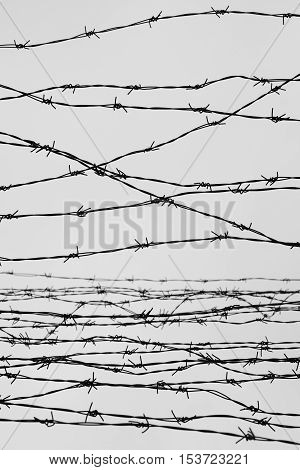 Fencing. Fence With Barbed Wire. Let. Jail. Thorns. Block. A Prisoner. Holocaust. Concentration Camp