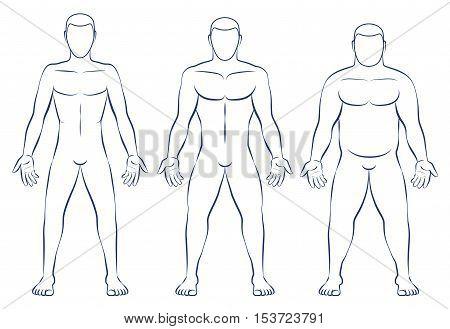 Body types - ectomorph, mesomorph and endomorph.