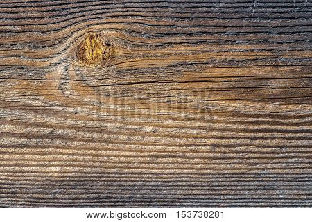 the structure of the old wooden logs of pine