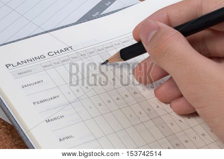 Project Plan Concepts. Blank Business Planning Chart Form. Details Of Empty Project Plan Chart For T