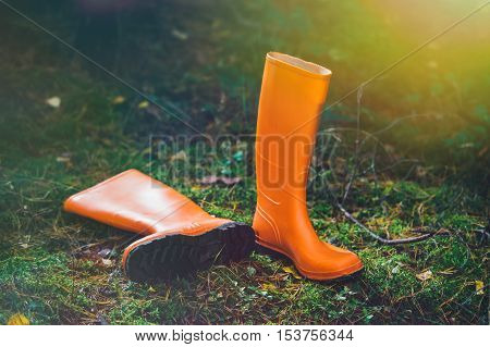 Orange rubber boots in a Sunny forest lying on the green grass