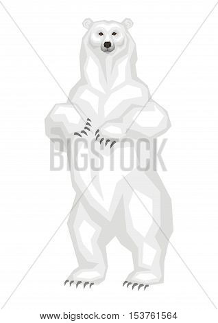 The great polar bear.  Vector image of a predatory animal. Isolated on a white background.