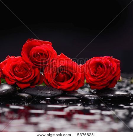 Four Red rose and therapy stones-black background