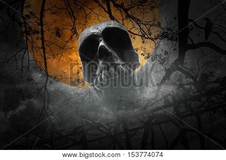 Human skull with old fence over dead tree crow moon and cloudy sky Vintage style Halloween concept
