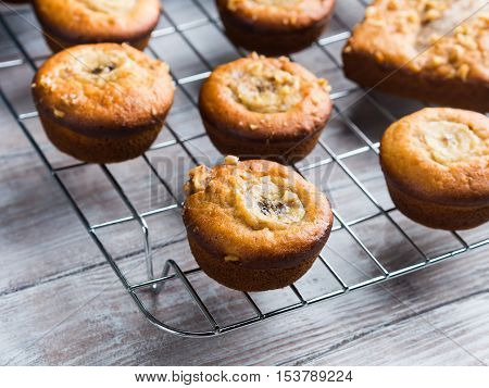 Freshly baked home made spiced banana muffins with walnuts