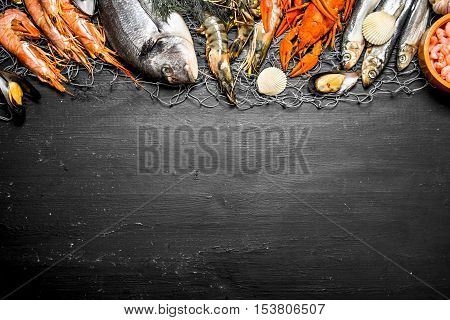 Various Marine Shrimp, Shellfish And Lobsters At The Fishing Net.