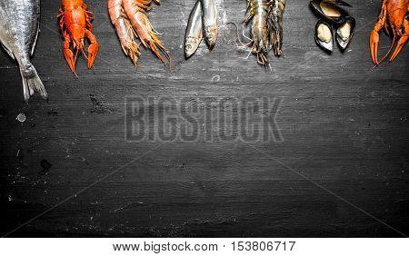 Variety Of Shrimp, Fish, And Shellfish.