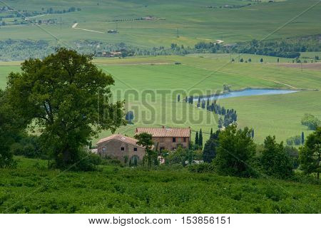Val d'Orcia Siena mountain bike excursion in the Tuscan hills - panoramic view of the road Mezzoquarto Checche from Podere Isabella