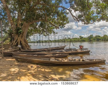 Traditional, Indian  Boats