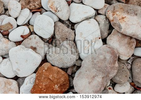 Sea pebbles. Middle and big stones texture background with autumn leaves. Autumn season.
