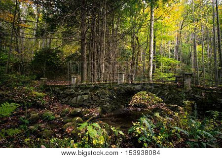Autumn Forest With Stone Footbridge In The Great Smoky Mountains. Historic bridge abandoned in the forests of the Great Smoky Mountains in the Elkmont Historic District. Gatlinburg, Tennessee.